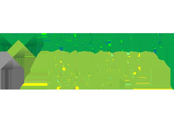 Halex Consulting Yorkshire Building Society Logo